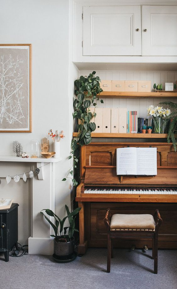 piano with indoor plants